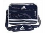 Сумка спортивная Sports Carry Bag Karate L сине-серебристо-белая